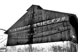 Foto distilleria Caroni fine attività 2003