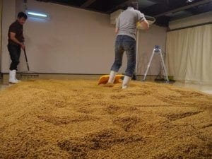 maltazione a pavimento Distilleria chichibu